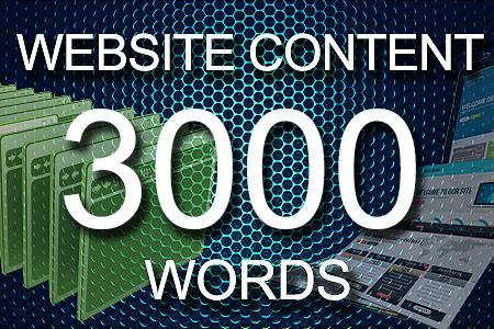 Website Content 3000 words