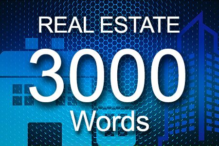 Real Estate 3000 words