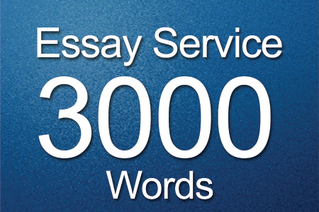 Essay Services 3000 words