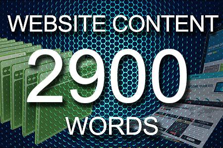 Website Content 2900 words
