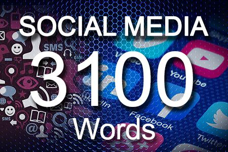 Social Media Posts 3100 words